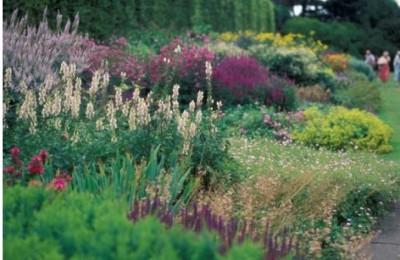 royal_botanic_garden_edinburgh-jpg